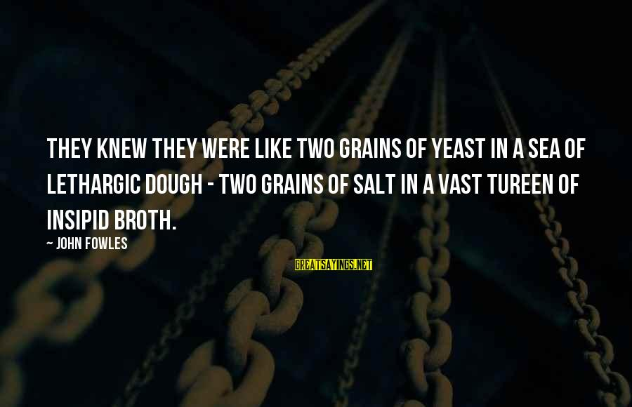 Lethargic Sayings By John Fowles: They knew they were like two grains of yeast in a sea of lethargic dough