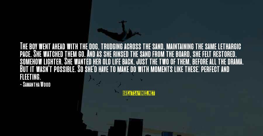 Lethargic Sayings By Samantha Wood: The boy went ahead with the dog, trudging across the sand, maintaining the same lethargic