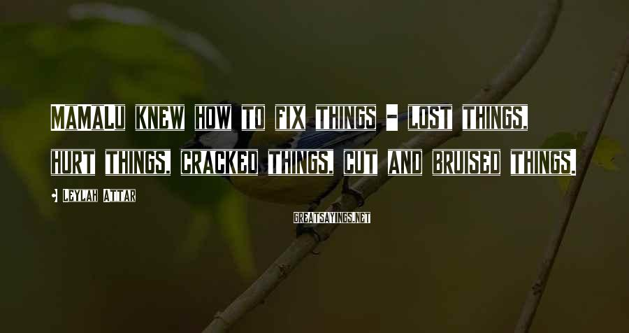 Leylah Attar Sayings: MaMaLu knew how to fix things - lost things, hurt things, cracked things, cut and