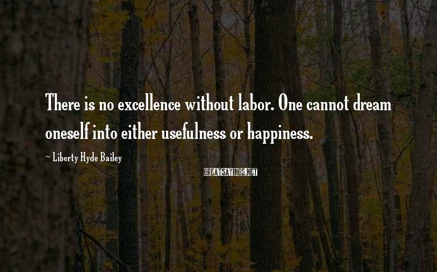 Liberty Hyde Bailey Sayings: There is no excellence without labor. One cannot dream oneself into either usefulness or happiness.