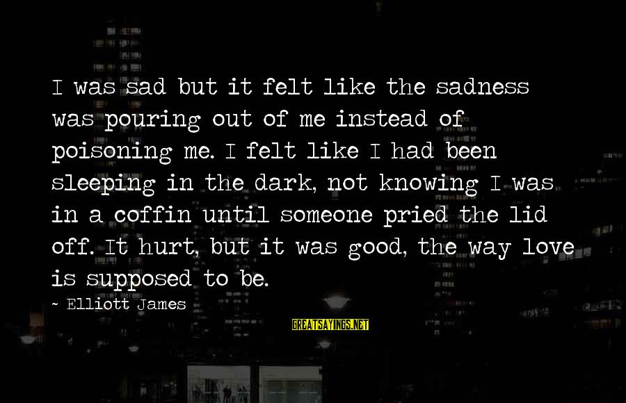 Lid Sayings By Elliott James: I was sad but it felt like the sadness was pouring out of me instead