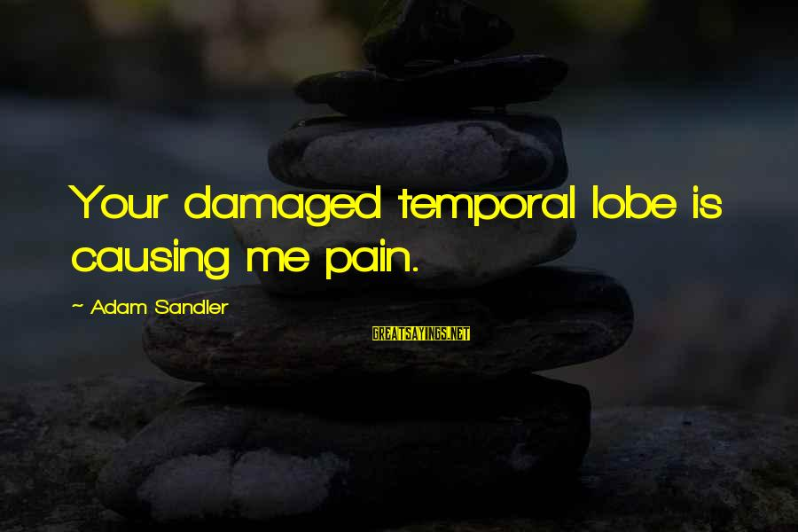 Lies And Trust In A Relationship Sayings By Adam Sandler: Your damaged temporal lobe is causing me pain.