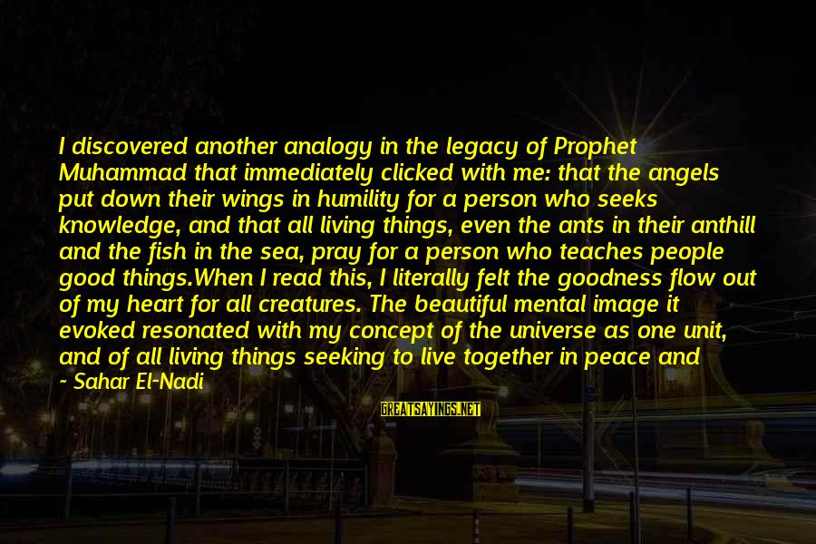 Life And Being A Good Person Sayings By Sahar El-Nadi: I discovered another analogy in the legacy of Prophet Muhammad that immediately clicked with me: