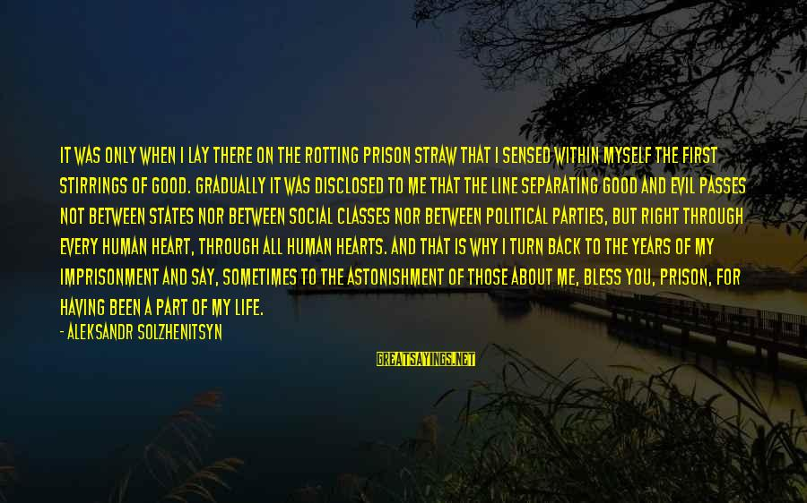Life And Evil Sayings By Aleksandr Solzhenitsyn: It was only when I lay there on the rotting prison straw that I sensed