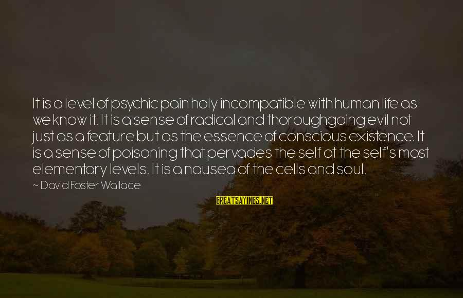 Life And Evil Sayings By David Foster Wallace: It is a level of psychic pain holy incompatible with human life as we know