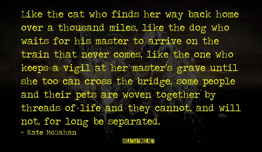 Life Finds A Way Sayings By Kate McGahan: Like the cat who finds her way back home over a thousand miles, like the