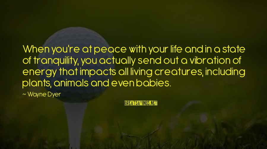 Life Impacts Sayings By Wayne Dyer: When you're at peace with your life and in a state of tranquility, you actually