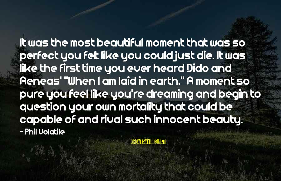 Life Love Beauty Sayings By Phil Volatile: It was the most beautiful moment that was so perfect you felt like you could