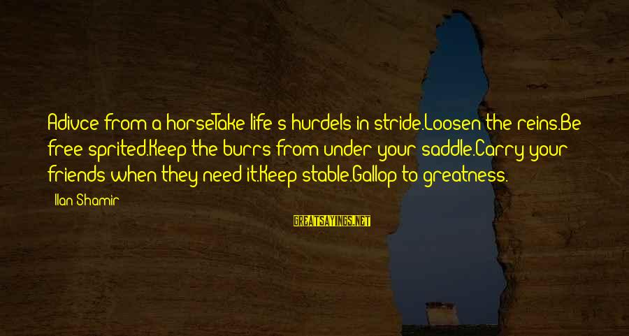 Life Stable Sayings By Ilan Shamir: Adivce from a horseTake life's hurdels in stride.Loosen the reins.Be free sprited.Keep the burrs from