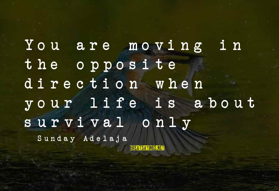 Life Time Love Sayings By Sunday Adelaja: You are moving in the opposite direction when your life is about survival only