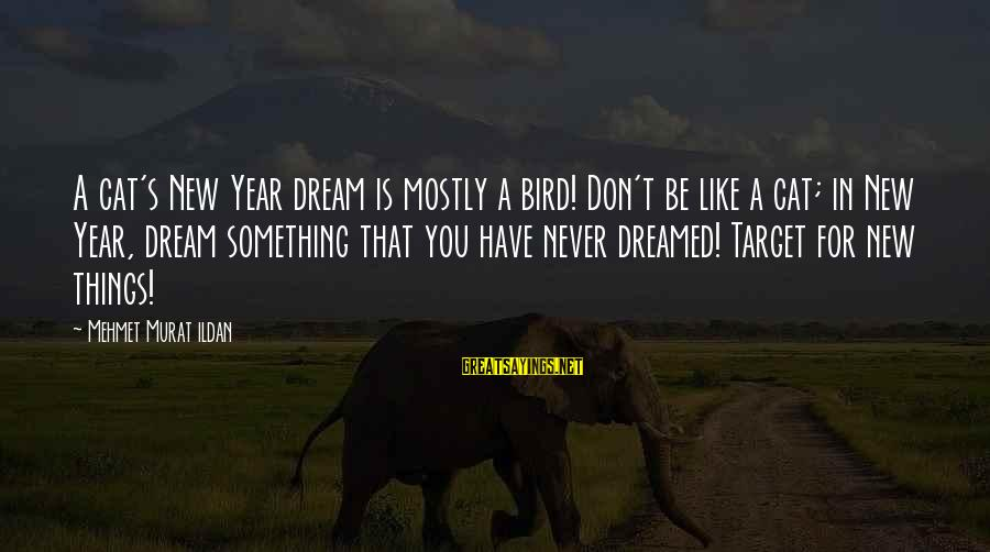 Like A Bird Sayings By Mehmet Murat Ildan: A cat's New Year dream is mostly a bird! Don't be like a cat; in