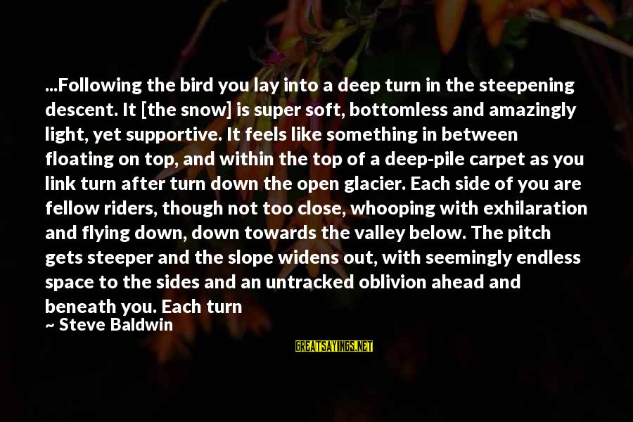 Like A Bird Sayings By Steve Baldwin: ...Following the bird you lay into a deep turn in the steepening descent. It [the