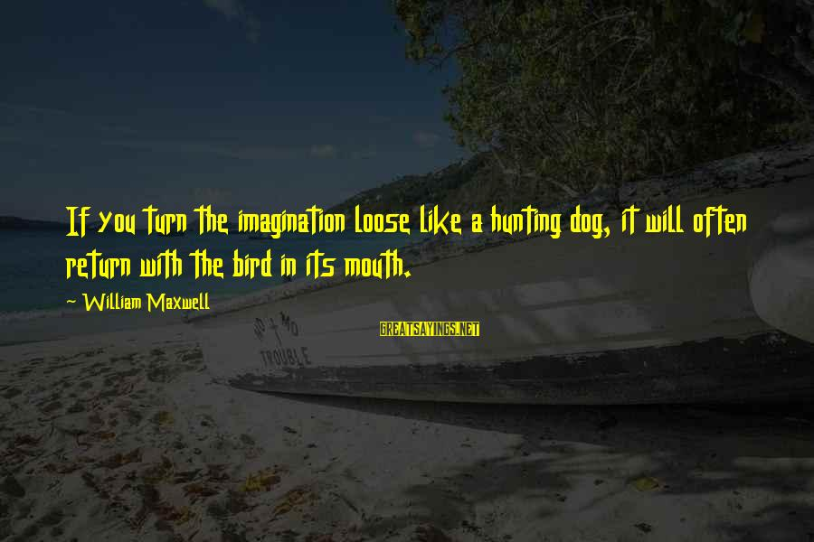 Like A Bird Sayings By William Maxwell: If you turn the imagination loose like a hunting dog, it will often return with