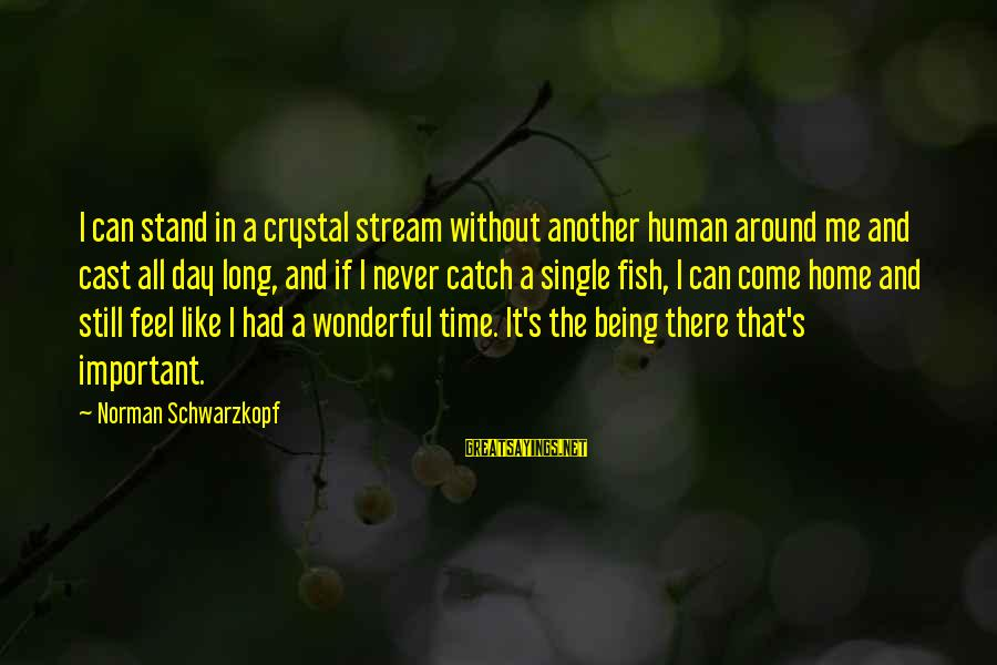 Like Being Single Sayings By Norman Schwarzkopf: I can stand in a crystal stream without another human around me and cast all