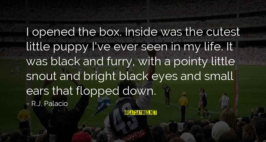 Little Black Box Sayings By R.J. Palacio: I opened the box. Inside was the cutest little puppy I've ever seen in my