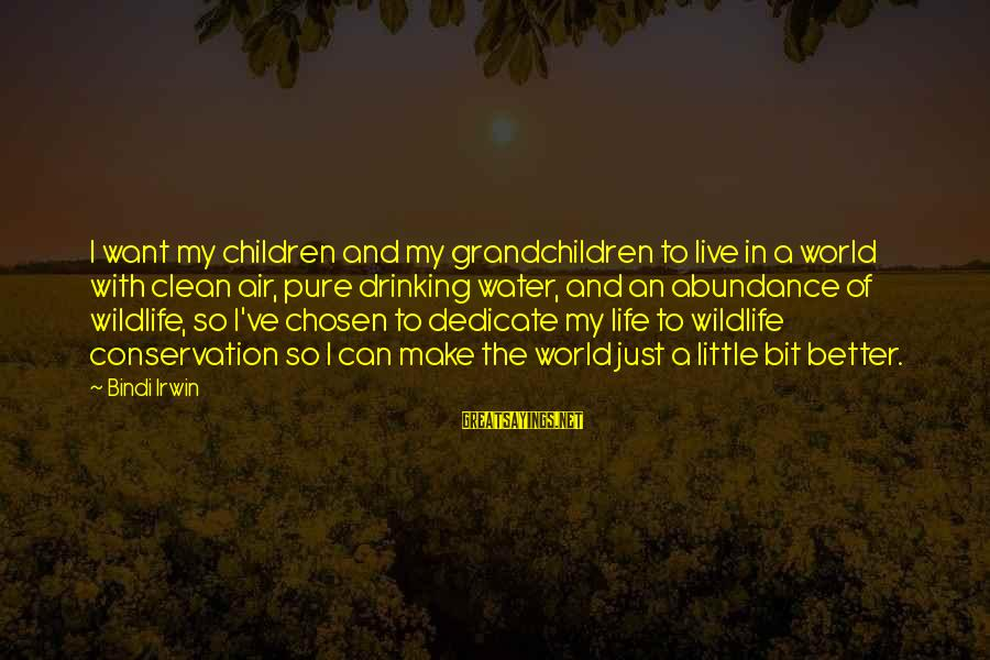 Live A Little Better Sayings By Bindi Irwin: I want my children and my grandchildren to live in a world with clean air,