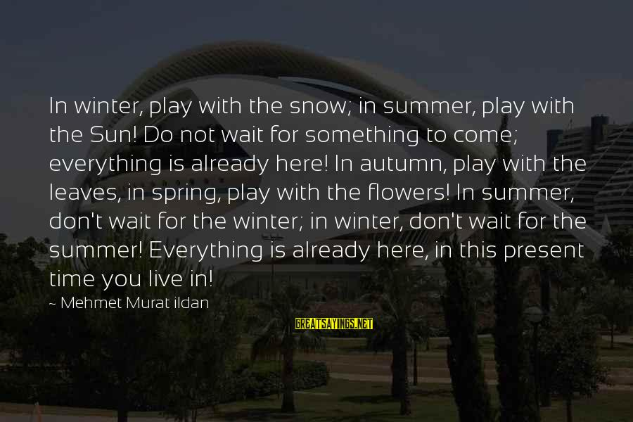 Live For Something Sayings By Mehmet Murat Ildan: In winter, play with the snow; in summer, play with the Sun! Do not wait