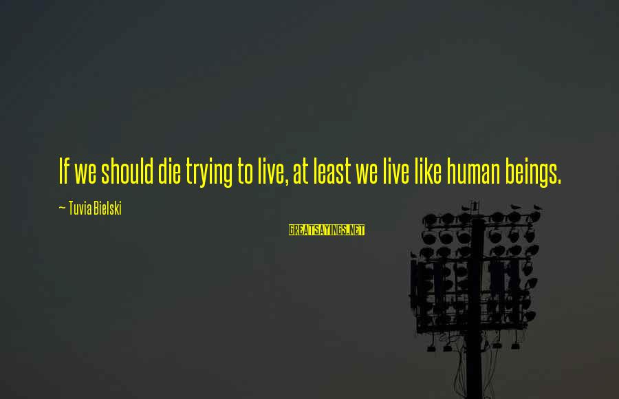 Live Or Die Trying Sayings By Tuvia Bielski: If we should die trying to live, at least we live like human beings.