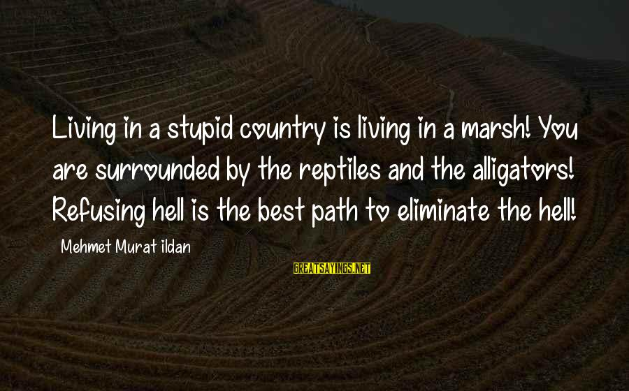 Living In Hell Sayings By Mehmet Murat Ildan: Living in a stupid country is living in a marsh! You are surrounded by the