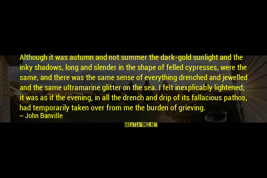 Long Shadows Sayings By John Banville: Although it was autumn and not summer the dark-gold sunlight and the inky shadows, long