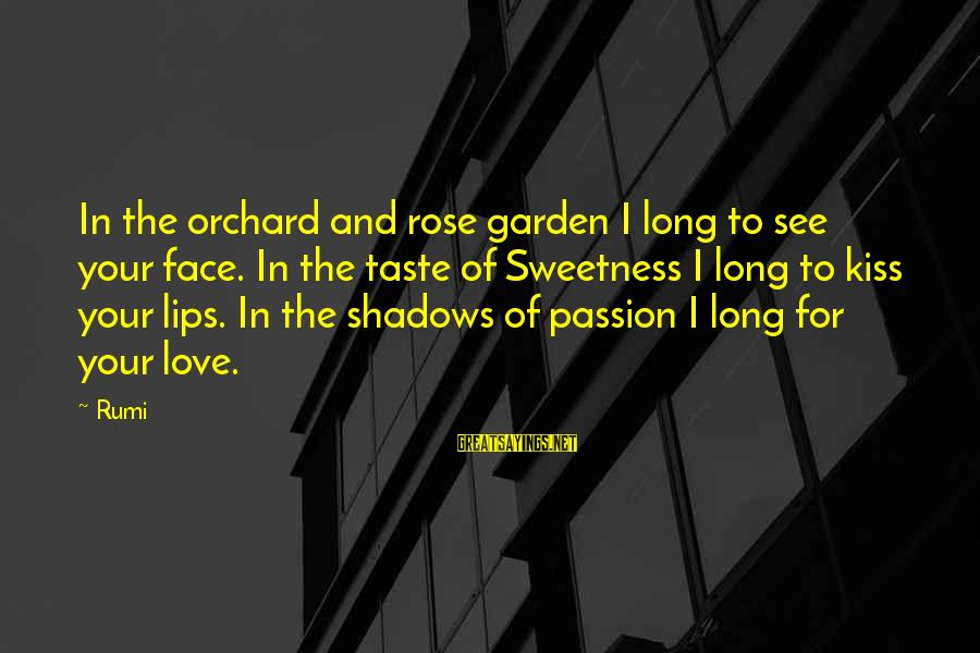 Long Shadows Sayings By Rumi: In the orchard and rose garden I long to see your face. In the taste
