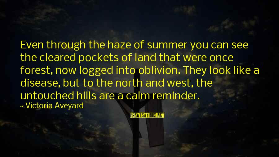 Look And See Sayings By Victoria Aveyard: Even through the haze of summer you can see the cleared pockets of land that