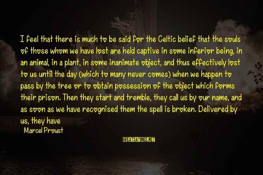 Lost Object Sayings By Marcel Proust: I feel that there is much to be said for the Celtic belief that the
