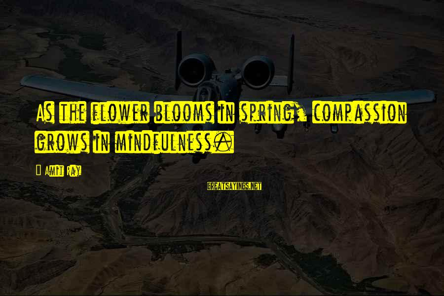 Love Blooms Sayings By Amit Ray: As the flower blooms in spring, compassion grows in mindfulness.