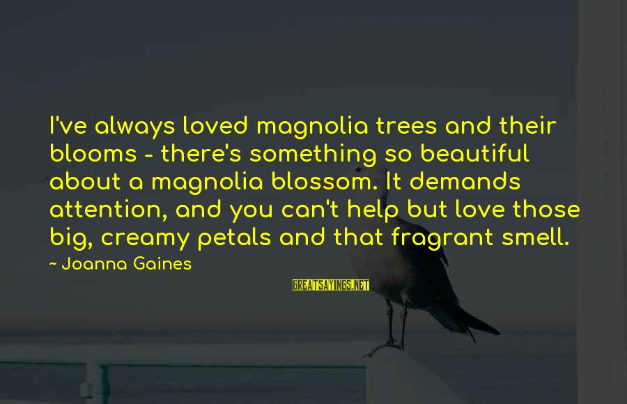 Love Blooms Sayings By Joanna Gaines: I've always loved magnolia trees and their blooms - there's something so beautiful about a