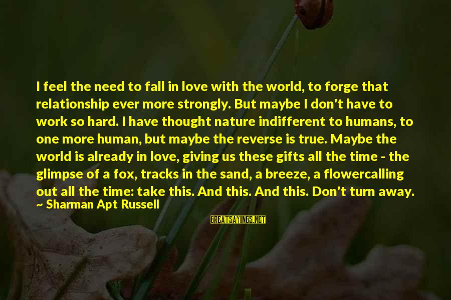 Love Is Hard Work Sayings By Sharman Apt Russell: I feel the need to fall in love with the world, to forge that relationship