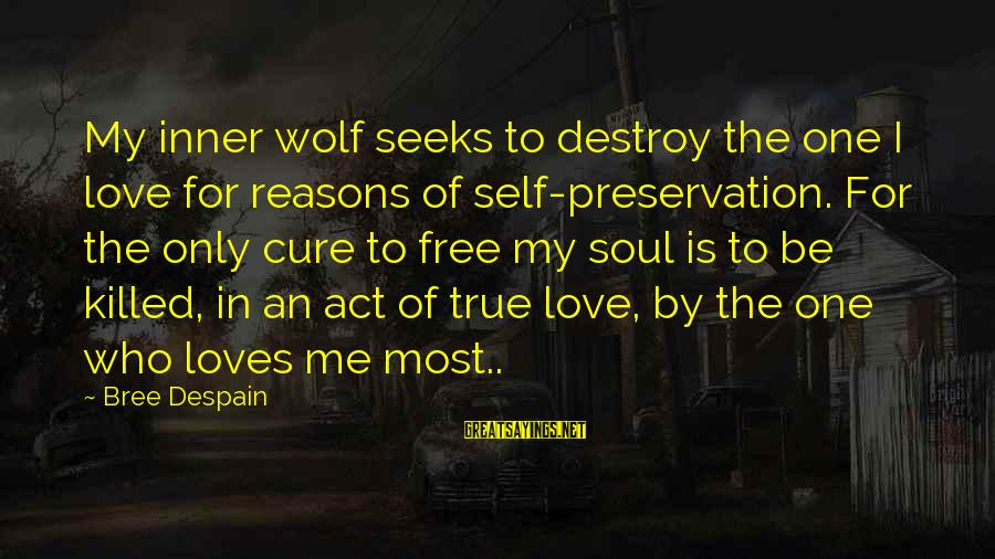 Love Killed Me Sayings By Bree Despain: My inner wolf seeks to destroy the one I love for reasons of self-preservation. For
