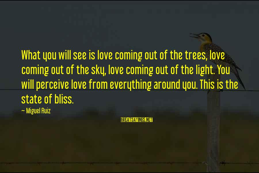 Love Perceive Sayings By Miguel Ruiz: What you will see is love coming out of the trees, love coming out of