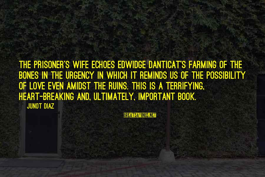 Love Prisoner Sayings By Junot Diaz: The Prisoner's Wife echoes Edwidge Danticat's Farming of the Bones in the urgency in which