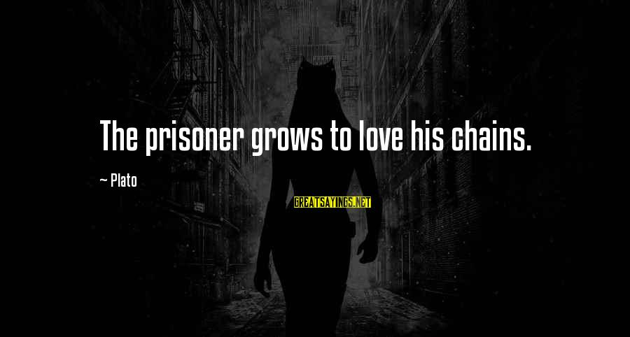 Love Prisoner Sayings By Plato: The prisoner grows to love his chains.