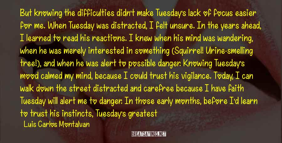 Luis Carlos Montalvan Sayings: But knowing the difficulties didn't make Tuesday's lack of focus easier for me. When Tuesday