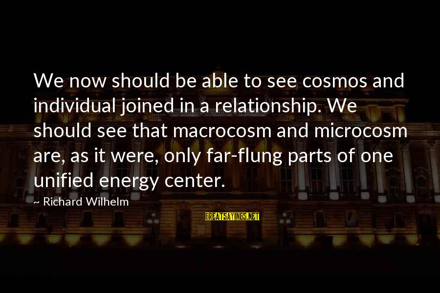 Macrocosm Sayings By Richard Wilhelm: We now should be able to see cosmos and individual joined in a relationship. We