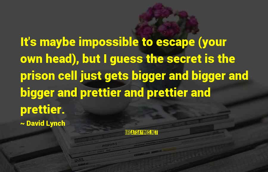 Madness And Insanity Sayings By David Lynch: It's maybe impossible to escape (your own head), but I guess the secret is the