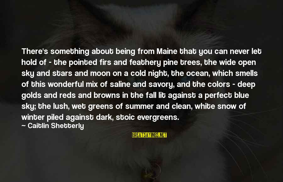 Maine Winter Sayings By Caitlin Shetterly: There's something about being from Maine that you can never let hold of - the