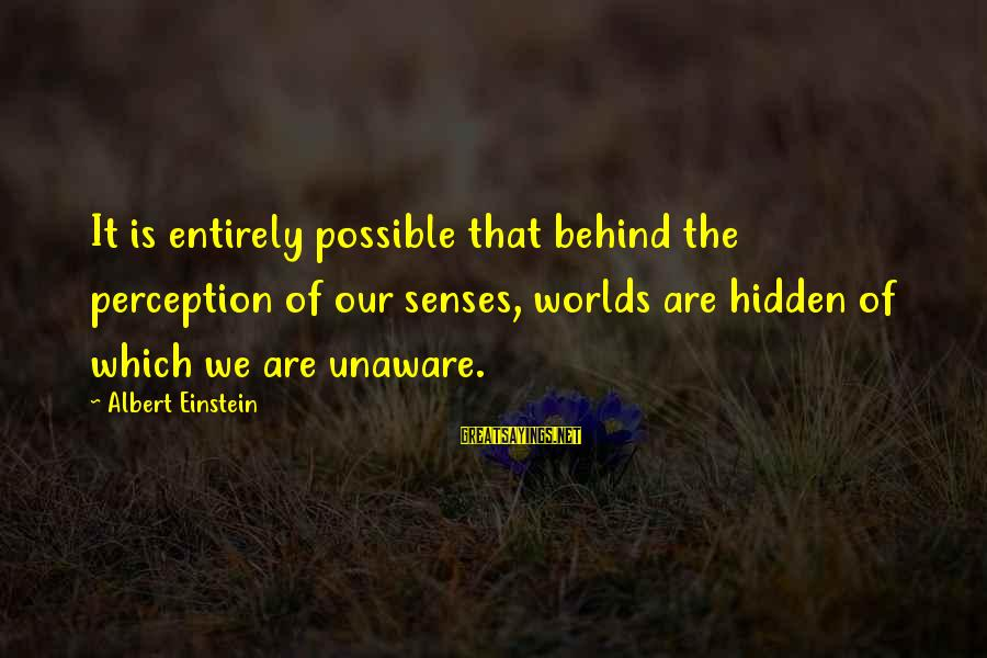 Mala Rodriguez Sayings By Albert Einstein: It is entirely possible that behind the perception of our senses, worlds are hidden of