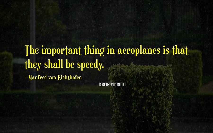 Manfred Von Richthofen Sayings: The important thing in aeroplanes is that they shall be speedy.