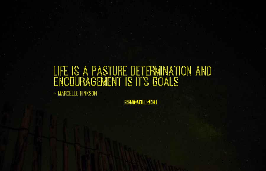 Marcelle Sayings By Marcelle Hinkson: Life is a pasture determination and encouragement is it's goals