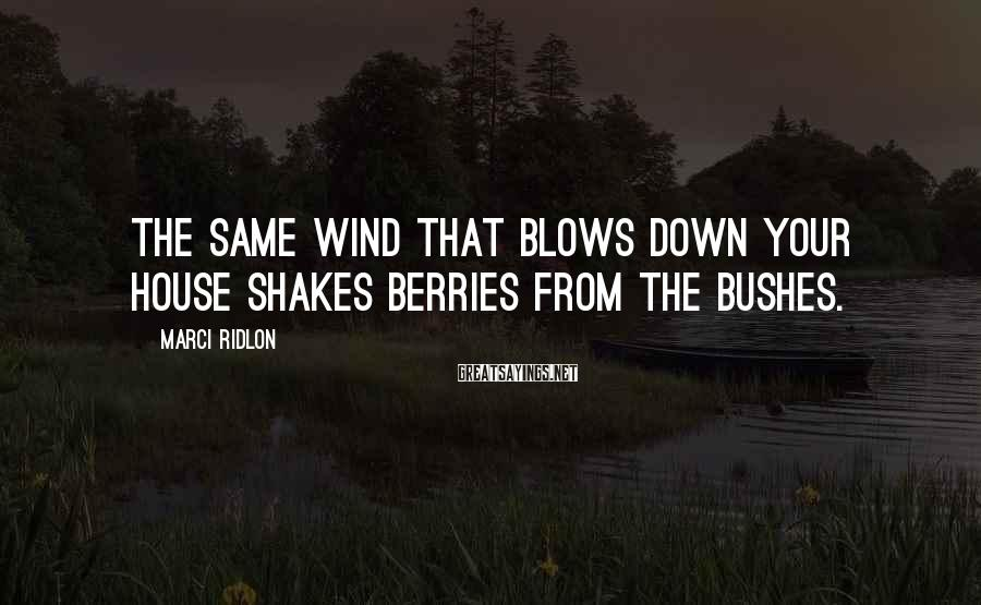 Marci Ridlon Sayings: The same wind that blows down your house shakes berries from the bushes.