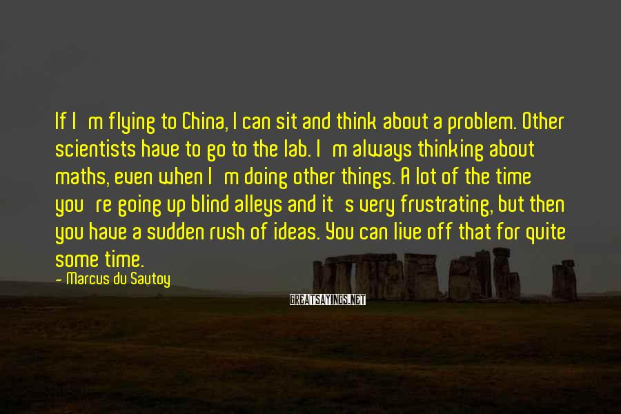 Marcus Du Sautoy Sayings: If I'm flying to China, I can sit and think about a problem. Other scientists