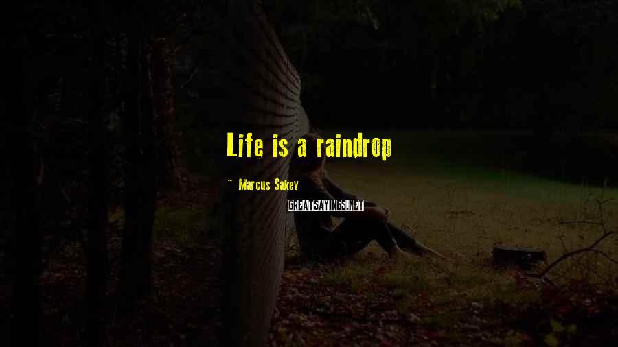 Marcus Sakey Sayings: Life is a raindrop