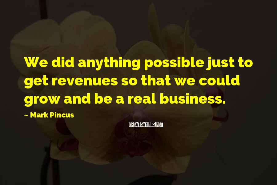 Mark Pincus Sayings: We did anything possible just to get revenues so that we could grow and be