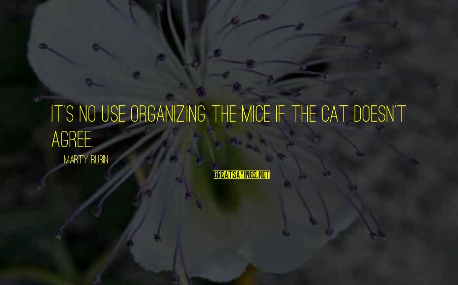 Marty's Sayings By Marty Rubin: It's no use organizing the mice if the cat doesn't agree.