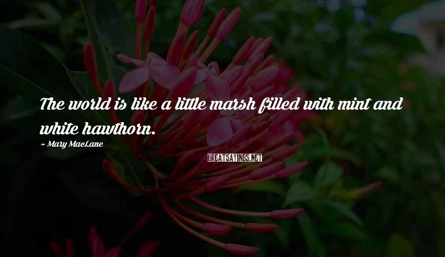 Mary MacLane Sayings: The world is like a little marsh filled with mint and white hawthorn.