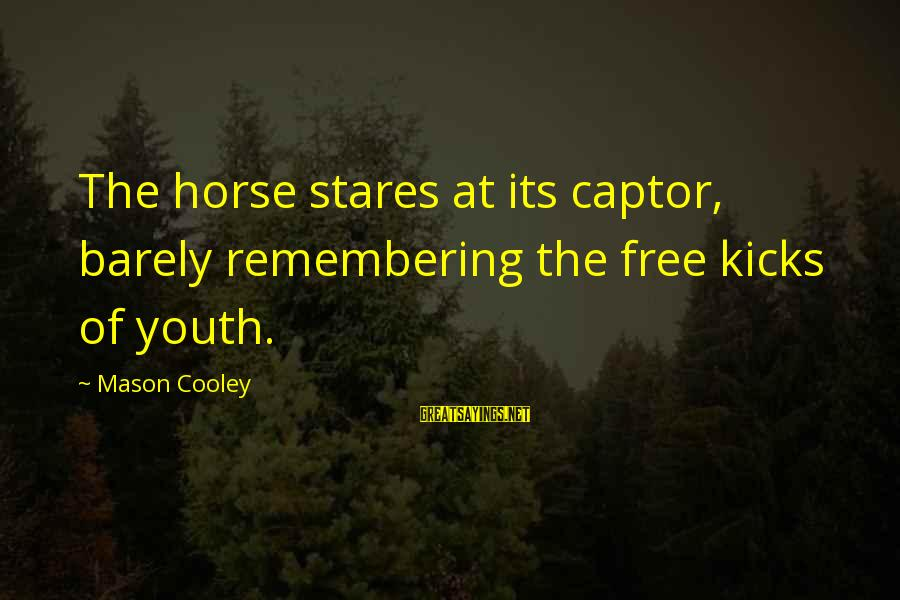 Mason Cooley Sayings By Mason Cooley: The horse stares at its captor, barely remembering the free kicks of youth.