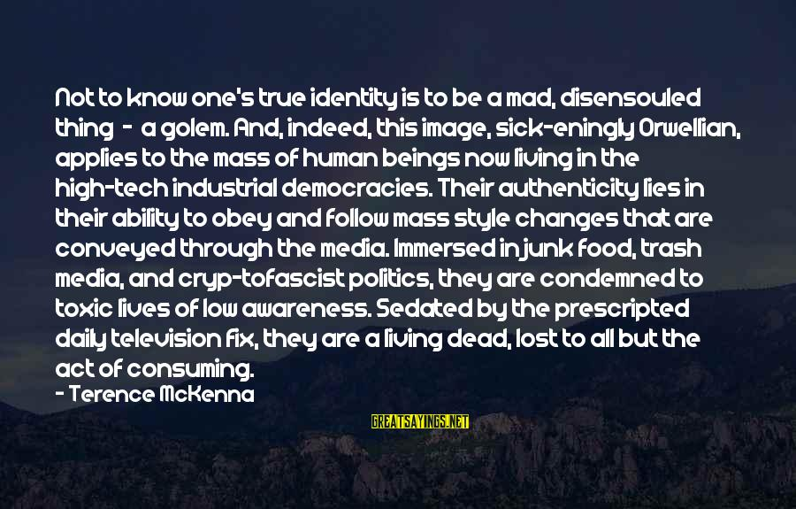 Mass Media And Politics Sayings By Terence McKenna: Not to know one's true identity is to be a mad, disensouled thing - a