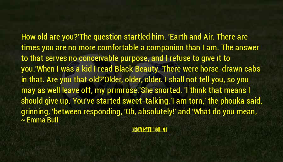 Means Of Old Sayings By Emma Bull: How old are you?'The question startled him. 'Earth and Air. There are times you are
